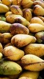 Зрелая предпосылка манго Стоковая Фотография RF