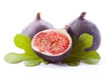 Зрелая свежая смоква Стоковые Изображения