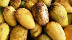 Зрелое манго закрытое-вверх Стоковые Изображения RF