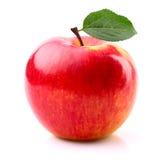 Зрелое яблоко с лист Стоковые Изображения RF