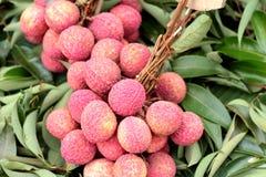 Зрелое lychee в рынке Стоковые Изображения RF