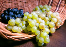 Зрелые виноградины в корзине Стоковая Фотография