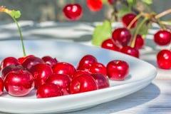 Зрелые вишни на плите и ягодах на ветви Стоковое Изображение RF