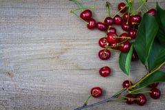 Зрелые вишни Стоковое Фото