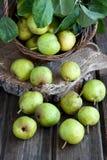 Зрелые груши на деревянной предпосылке Стоковое Фото
