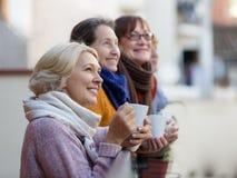 Зрелые женщины выпивая чай Стоковая Фотография