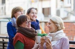 Зрелые женщины выпивая чай Стоковое Изображение