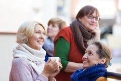 Зрелые женщины выпивая чай Стоковое фото RF