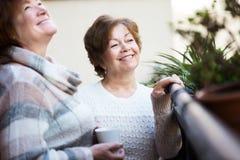 Зрелые женщины говоря на патио Стоковая Фотография RF