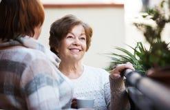 Зрелые женщины говоря на патио Стоковое Фото