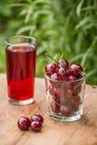 Зрелые красные вишни и стекло сока вишни на таблице в саде outdoors Стоковое фото RF