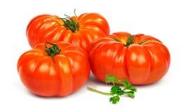 Зрелые красные томаты Timento Стоковые Фото