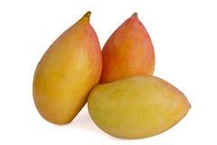 Зрелые мангоы Стоковое Изображение RF