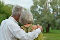 Зрелые пары дальше в парке лета Стоковое Фото