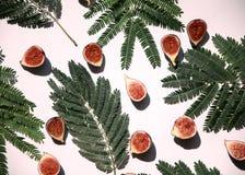 Зрелые половины смоквы Стоковая Фотография