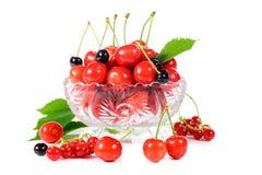 Зрелые плодоовощи вишни Стоковые Фото