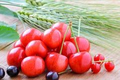 Зрелые плодоовощи вишни Стоковые Фотографии RF