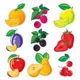 Зрелые плодоовощ, ягоды и куски приносить и ягоды Стоковые Изображения