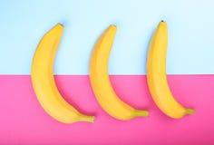 Зрелые, свежие и сладостные желтые бананы на яркое розовом и светлый - голубая предпосылка бананы тропические Банан, конец-вверх стоковое фото