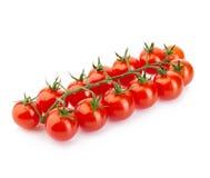 Зрелые свежие томаты вишни на ветви изолированной на белой предпосылке Стоковое Изображение RF