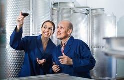 Зрелые сотрудники человека и женщин смотря вино в стекле Стоковое Изображение RF
