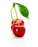 Зрелые сочные вишни с лист на белой предпосылке Стоковое Изображение
