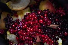 Зрелые сочные ягоды клюкв, красных смородин, вишен, яблок и циннамона для подготовки компота здоровья Стоковое Изображение