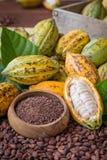 Зрелые стручок какао и nibs, бобы кака настроили предпосылку Стоковые Изображения RF
