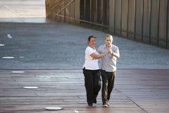 Зрелые танцы пар в парке Стоковые Изображения RF