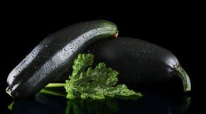 Зрелые цукини на черной предпосылке Стоковое Изображение RF