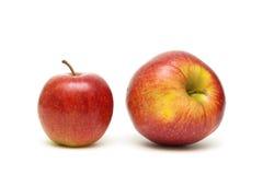 Зрелые яблоки на белой предпосылке Стоковые Фотографии RF
