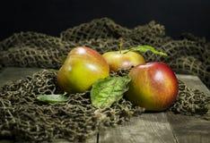 Зрелые яблоки на деревянной предпосылке Стоковые Изображения
