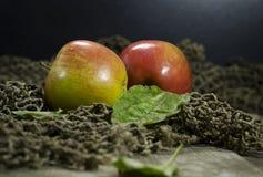 Зрелые яблоки на деревянной предпосылке Стоковое фото RF