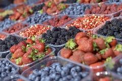 Зрелые ягоды в пластмасовом контейнере Стоковые Изображения