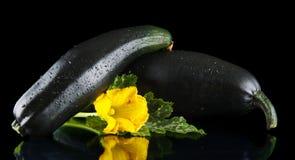 Зрелые courgettes с цветками на черной предпосылке Стоковое Изображение RF