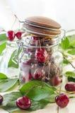 Зрелые maroon вишни в стеклянной вазе и опарнике Стоковые Фотографии RF