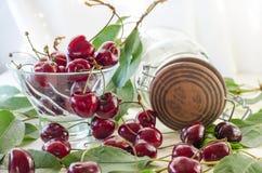 Зрелые maroon вишни в стеклянной вазе и опарнике Стоковое фото RF