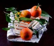 Зрелые Tangerines с листьями Стоковые Фото