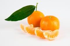 зрелые tangerines стоковая фотография