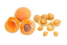 Зрелый абрикос и крупный план стерженей абрикоса Стоковые Изображения
