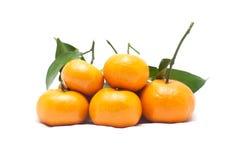 Зрелый апельсин Стоковое фото RF