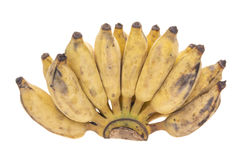 Зрелый банан руки Стоковые Фото