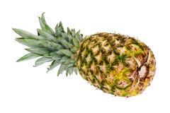 Зрелый весь ананас изолированный на белой предпосылке. иллюстрация вектора