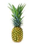 Зрелый весь ананас на белой предпосылке стоковое фото