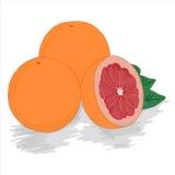 Зрелый грейпфрут красного цвета отрезка Стоковое Изображение RF