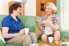 Зрелый женский выпивая чай 2 Стоковое Изображение