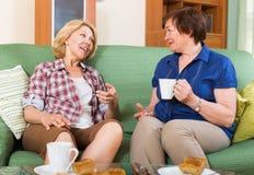 Зрелый женский выпивая чай 2 Стоковая Фотография