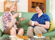 Зрелый женский выпивая чай 2 Стоковые Фото