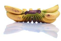 Зрелый желтый младенец бананов на белизне изолировал предпосылку с refle Стоковое Изображение RF