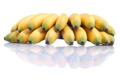 Зрелый желтый младенец бананов на белизне изолировал предпосылку с refle Стоковые Изображения RF